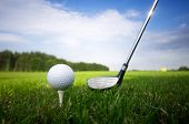 stock photo of golf  - Playing golf - JPG