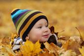 image of prone  - 2 years old baby boy in autumn leaves in a park - JPG