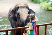 Kids Feed Elephant In Zoo. Family At Animal Park. poster