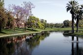 Palm Desert Golf Course And Timeshares