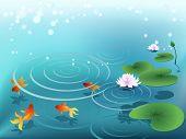 Teich mit Goldfische