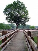 Sarospatak, Bridge Of The Rakoczi Castle