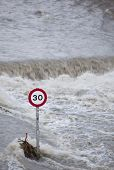 Speed sign surviving in a flooded street.