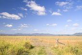 Wide Farm Land
