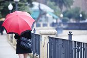 stock photo of street-walker  - Young girl behind umbrella while it - JPG