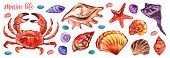 Marine Watercolour In Realistic Style On White Background. Marine Underwater Life. Illustration Isol poster