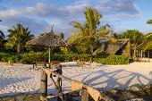 Beach Resort. Umbrellas And Sun Beds Under Palm Trees On The Beach. Ocean Coast Of Zanzibar Island.  poster