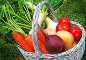lovely fresh vegetables in a basket