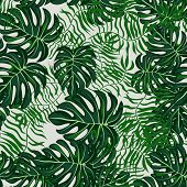 Green Tropical Leaves Seamless Pattern.tropical Background With Leaves. poster