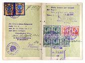 Early European Passport Dated 1925.