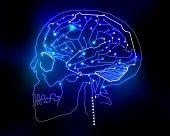 circuit human brain background