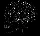 brain circuit microchip illustration