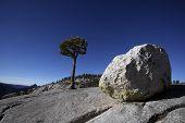 Erratic Boulders, Yosemite National Park