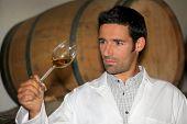 Homem de degustação de vinho