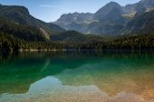Beautiful View Of Lake Tovel, The Largest Of All Natural Lakes In Trentino In The Adamello Brenta Pa poster