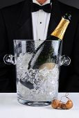 Closeup of a waiter standing behind a champagne bucket, Shallow depth of field man is unrecognizable