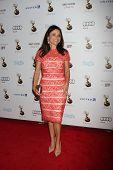 LOS ANGELES - SEP 21:  Julia Louis-Dreyfus arrives at the Primetime Emmys Performers Nominee Recepti