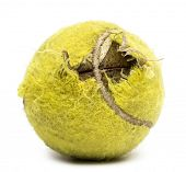 Chewed tennis ball against white background