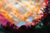 Trees And Branches Colorful Landscape