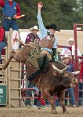 Rodeo - Seth Glause Bull Riding