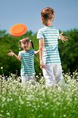 picture of frisbee  - Happy boy and little girl playing frisbee on a meadow in a sunny day - JPG