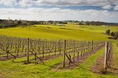 Barringwood Park Winery