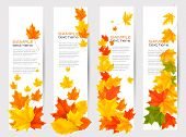 Set of autumn banners with colorful leaves.  Vector illustration.
