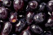 Black Seedless Grapes