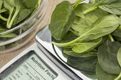 fresh spinach  on diet scale displaying nutrition facts - a diet concept