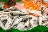 Assorted fish on ice in seafood market