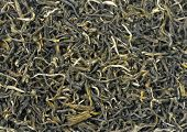 Texture background of loose green tea. Type is spring bud green tea