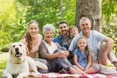 picture of grandparent child  - Portrait of an extended family with their pet dog sitting at the park - JPG