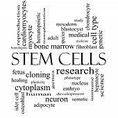 picture of fibroblast  - Stem Cells Word Cloud Concept in black and white with great terms such as research human medical and more - JPG