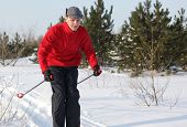 picture of nordic skiing  - Cross - JPG