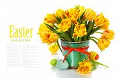 spring tulips with easter eggs on white background (with easy removable text)