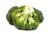 Single Broccoli Floret Isolated On White