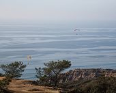 foto of glider  - Para gliders over California - JPG