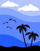 silhouette of a palm tree with seagulls