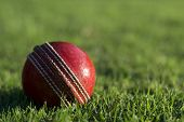 stock photo of cricket ball  - Close up of a side lit red cricket ball on the green grass of a sports field with copyspace - JPG