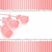 Greeting Card With Pink Roses On Retro Pink Background