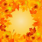 Autumn Leaves background with copy space