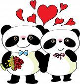 2 pandas fall in love