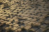 image of cobblestone  - Grass growing through cobblestones - JPG