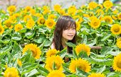 Cute Thai Girl In The Middle Of Beautiful Sunflower Field