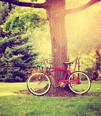 an old bike leaning against a tree toned with a retro vintage instagram filter