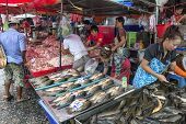 Chicken Fish Vendors