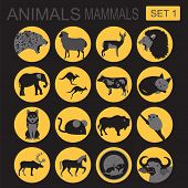 Animals Mammals Icon Set. Vector Flat Style
