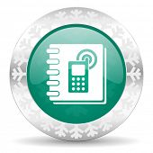 phonebook green icon, christmas button