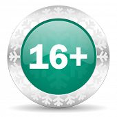 adults green icon, christmas button