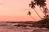 Pink Sunset Rocky Point